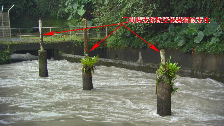 烏來電廠前池:前池中的一排柱子是二戰時用來防止盟軍轟炸的「防空偽裝網」用做支撐防空網。