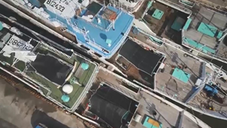高雄港:前鎮漁港漁船