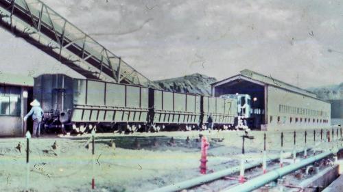 桃林鐵路支線全長19餘公里,是林口電廠廠區運送燃煤的主要途徑。