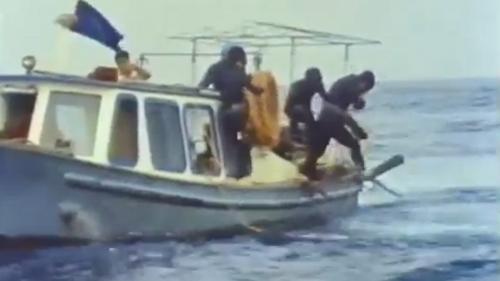 蘇澳港沈箱前蛙人先下海進行海底整平:沉箱合成堤在施工之前 須進行海底整平。