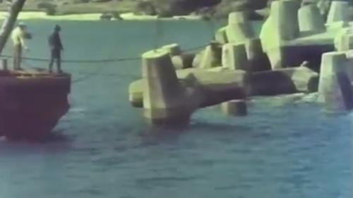 蘇澳港沈箱作業-吊放消波塊在沉箱兩側:沉箱填滿砂石後,再吊放消波塊在沉箱兩側,以及第一座沉箱和拋石堤之間的空檔。