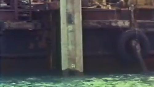 蘇澳港的第一座碼頭的第一根基樁:1975年11月4日蘇澳港的第一座碼頭打下了第一根基樁。