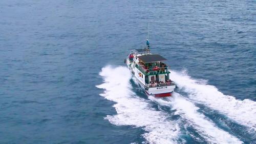 花蓮港結合港內外之海洋觀光資源,積極推動、發展觀光遊憩業務,帶動花蓮觀光人潮與商機。圖為花蓮賞鯨船。