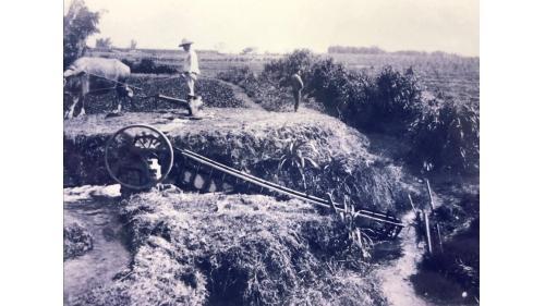 鳥山頭水庫:早期的嘉南平原