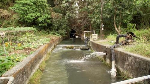 美濃人對其先民冒生命危險開闢的龍肚圳及獅子頭圳等灌溉用水源很是珍惜。
