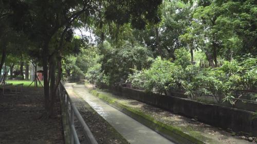 嘉義新民大學校區旁(下路頭)的道將圳