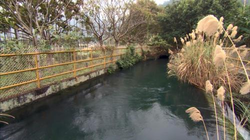 軟橋發電廠前池