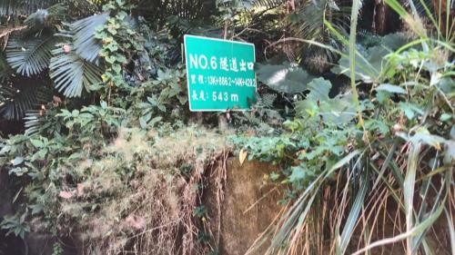 白冷圳6號隧道出口