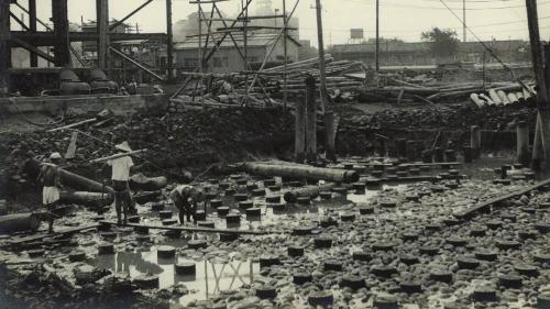 施工人員在廠房位置打入了近2300根木樁做基礎。