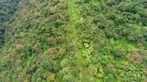 木瓜溪流域清水電廠壓力鋼管及台車道