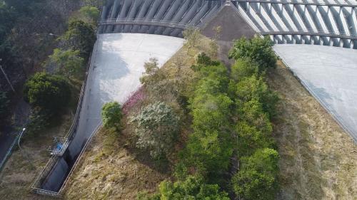位於集集鎮田寮里隘寮堤防內之丘陵坡地,佔地約13公頃,採兩座並聯方式設計,以因應70秒立方公尺的龐大通水量。