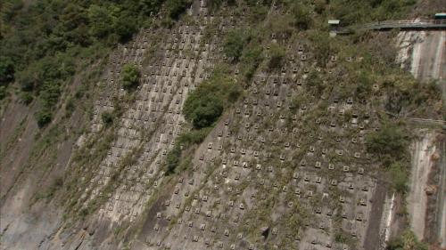 大甲溪流域谷關壩岩壁岩卯