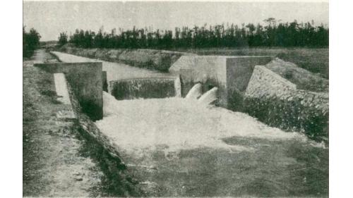 桃園大圳第4號2支線水路(1937年攝)
